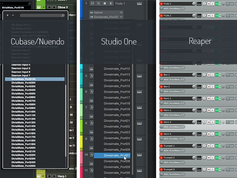 … which you can select in the DAW of your choice.